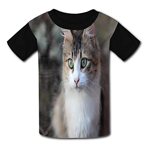 Lovely Cat Child Short Sleeve Fashion T-Shirt Of Boys And Girls M