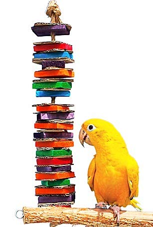 Birds LOVE Chew-Tastic Single Tower of Shredded Fun Toy for Green Cheek Conures Sun Conures Caiques Senegals Quakers and Similar Sized Birds