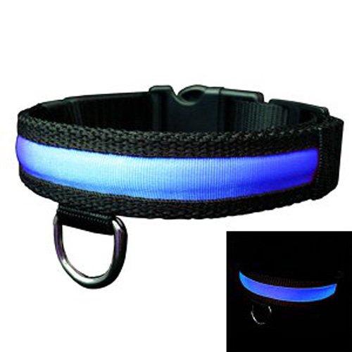 Adjustable LED Light Flat Collar for Pet Dog Blue S-Size, My Pet Supplies