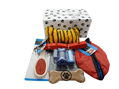 (SanAndCo New Puppy Gift Box with Paw Print Wrapping Paper)
