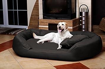 tierlando SV5-40 Articulos ortopedicos Cama para perro SAMMY VISCO de fest túpido PolyesterGr. XXL 140cm Antracita: Amazon.es: Productos para mascotas