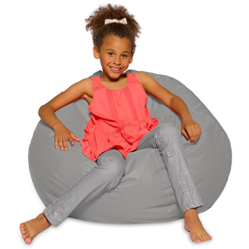 Big Comfy Bean Bag Chair: Posh Large Beanbag Chairs for Kids, Teens and Adults - Polyester Cloth Puff Sack Lounger Furniture for All Ages - 27 Inch - Solid Gray by Posh Beanbags