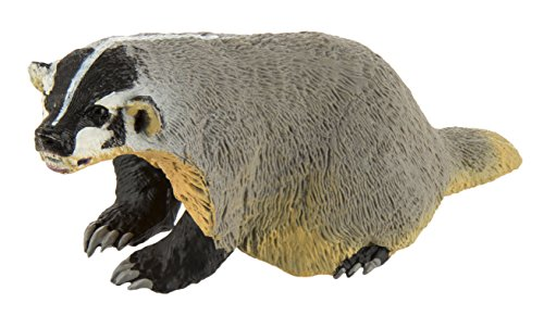 Safari Ltd. Wild Safari North American Wildlife - American Badger - Realistic Hand Painted Toy Figurine Model - Quality Construction from Safe and BPA Free Materials - for Ages 3 and Up