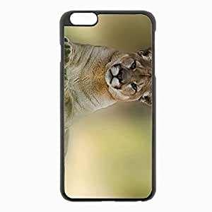 iPhone 6 Plus Black Hardshell Case 5.5inch - cougar mountain lion Desin Images Protector Back Cover