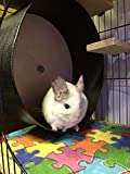 "Felix & Fido Spin Safe 15"" Chinchilla and Other"