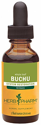 Herb Pharm Certified Organic Buchu Liquid Extract for Urinary System Support - 1 Ounce (Buchu Leaves)