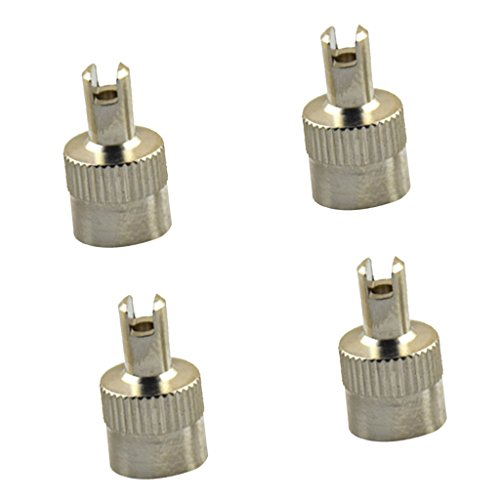 Baosity 4PCS Metal Slotted Head Valve Stem Caps With Core Remover Tool Motorcyle Car ()