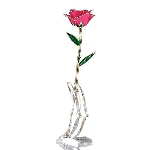 Dipped Decor - ZJchao Gifts Women, Long Stem Dipped 24k Gold Rose in Gift Box Stand Gift Her (Pink Rose Stand)