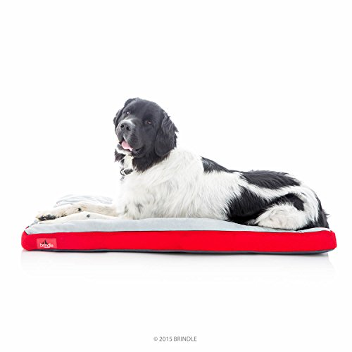 Brindle Soft Shredded Memory Foam Dog Bed with Removable Washable Cover - 46in x 28in - Red