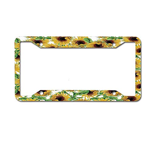 Jackie Prout ss Dried Sunflowers Illustration Wildflowers Branch Herbarium Artistic Design Fine Art License Plate Frame Aluminum Car Tag for US Canada Vehicles 4 Holes and Screws
