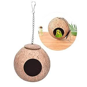 Tofree - Caseta de pájaros de Coco Natural, Cola Larga, pequeña ...