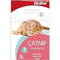 BIOLINE CATNIP for pets, 20G