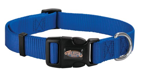 Weaver Leather Prism Snap-N-Go Collar, Small, Blue