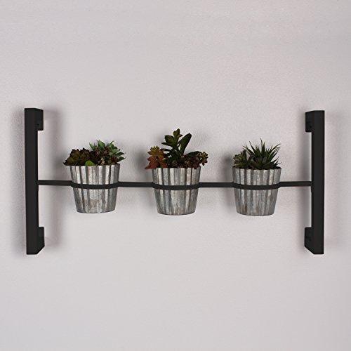 Groves Indoor Herb Garden Hanging 3 Pot Wall Planter