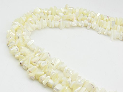 Natural White Trochus Sea Shells Hammer Shell Loose Beads 1 Strand 33 Inch Per Bag for Jewelry Making (SH-1000) ()