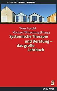 lehrbuch der systemischen therapie und beratung i und ii limitierte studienausgabe limitstudienausgabecplzvorzugspreis