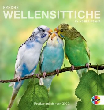 Freche Wellensittiche 2011. Postkartenkalender