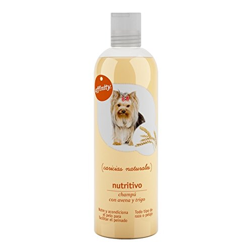 AFFINITY champú nutritivo para perros todo tipo de razas botella 250 ml: Amazon.es: Alimentación y bebidas