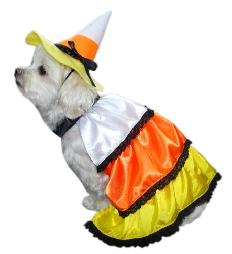 Anit Accessories Candy Corn Dog Costume, (Maltese Dog Costumes)