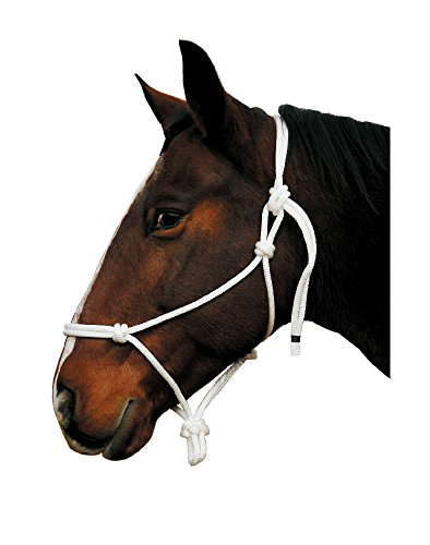 Arab Halter (The Colorado Saddlery Arab Size Knotted)