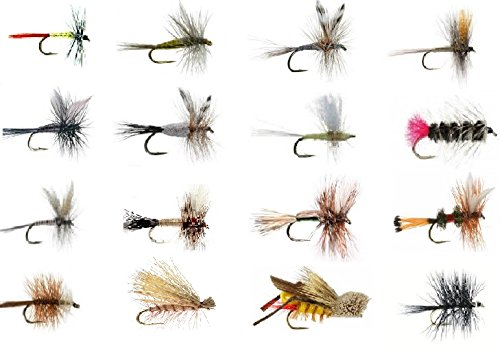 - Feeder Creek Fly Fishing Assortment - Wet and Dry Flies for Trout Fishing and Other Freshwater Fish - 16 Patterns (1 of Each) Adams, Mayflies, Attractors, Worm, Hopper and More (16)