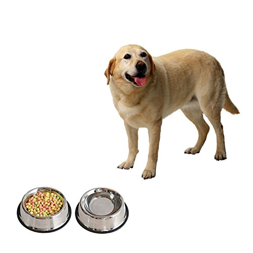 4LoveDogs Stainless Steel Dog Bowls, 32 Oz (Set of 2)