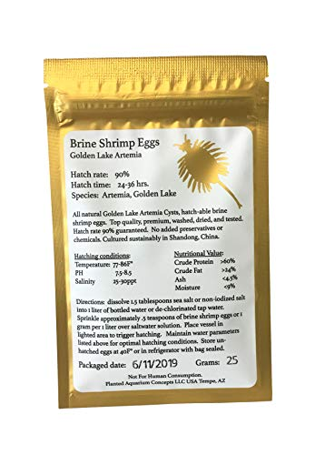 Golden Lake 25 Grams Brine Shrimp Eggs, Limited Batch 2019 Summer Harvest, GSL Strain, 90% Hatching Artemia, Fresh Stock Tested June 2019