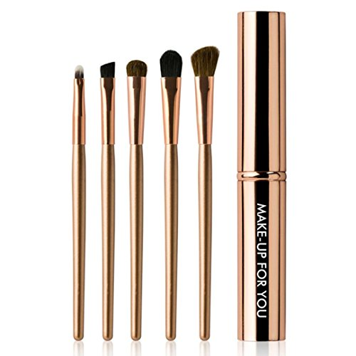 eb87796d195b Amazon.com: 5 Pcs Professional Makeup, Eye Eyeshadow Brush Brushes ...