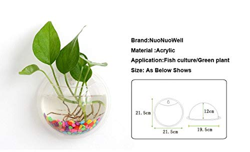 NuoNuoWell 1 Piece Acrylic Wall Mounted Transparent Fish Tank Wall Aquarium Hanging Fish Bowls Home Decoration   Clear, as photo shows