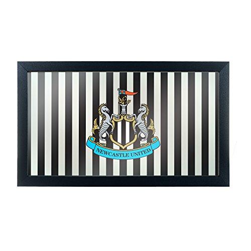 fan products of Premier League Newcastle United Framed Logo Mirror