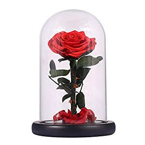 Artificial & Dried Flowers - Glass Cover Fresh Preserved Rose Flower Barbed Flores Home Party Decoration Valentine 39 S Day Gift - Artificial Flowers Dried 50