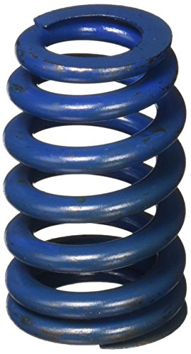 GM Performance Parts 12499224 SPRING PKG,VLV (Ls6 Valve Spring)