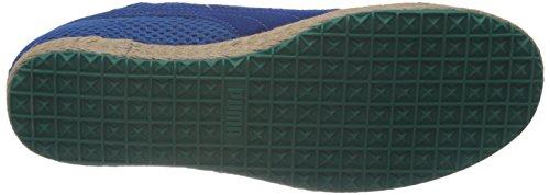 Puma - Zapatillas, tamaño 45 UK, color negro Blau (snorkel blue-greenlake-vaporous grey 05) (Blau (snorkel blue-greenlake-vaporous grey 05))