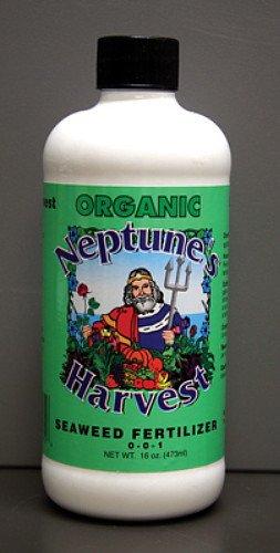 Neptune's Harvest Of Seaweed Blend Liquid Fertilizer