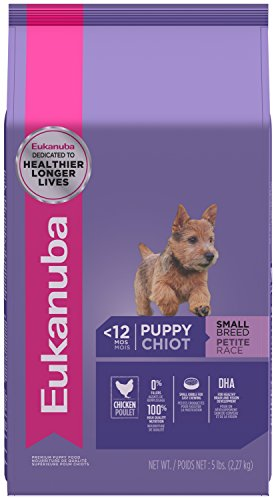 Eukanuba Puppy Small Breed Puppy Food 5 Pounds (Food Breed Small Puppy)