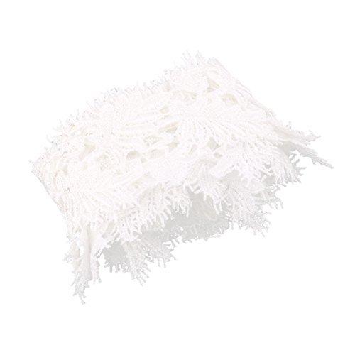 Amazon.com: eDealMax Poliéster Inicio diseño de la hoja hecha a Mano ropa de la Falda del borde de costura Decoración borde de Encaje Negro