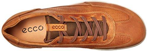 Iowa ECCO 59128 amber Uomo Stringate Marrone Scarpe Lion w6ddpaSqvx