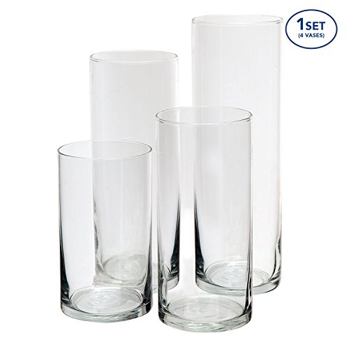 Royal Imports Glass Cylinder Vases SET OF 4 Decorative Centerpieces For Home or Wedding by (Round Bamboo Vases)
