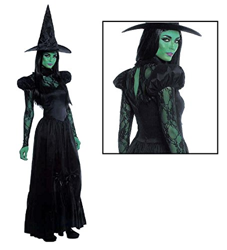 Lip Service - Wicked Witch of the North -- Adult Small Costume