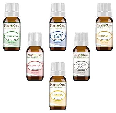Weight loss set Essential Oil Variety set Kit - 6 Pack - 100% Pure Therapeutic Grade 10 ml. Set includes- (Peppermint, Grapefruit, Juniper Berry, Lemon, Ginger, Bergamot)