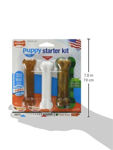 Nylabone-Puppy-Starter-Packs-Puppy-Chew-Toys