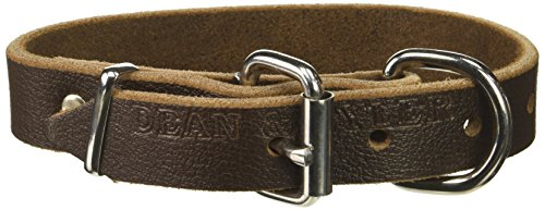"""Dean and Tyler """"B and B"""", Basic Leather Dog Collar with Strong Nickel Hardware – Brown – Size 12-Inch by 1-Inch – Fits Neck 10-Inch to 14-Inch"""