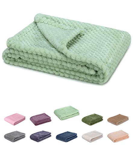 Baby Fleece Blanket - Fuzzy blanket or fluffy blanket for baby girl or boy, soft warm cozy coral fleece toddler, infant or newborn receiving blanket for crib, stroller, travel, outdoor, decorative (28 x 40 in Pastel Green)