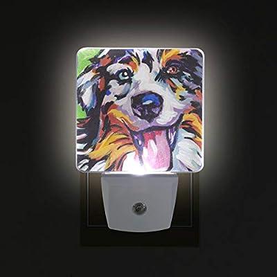 Night Light Shepherd Art Led Light Lamp for Hallway, Kitchen, Bathroom, Bedroom, Stairs, DaylightWhite, Bedroom, Compact
