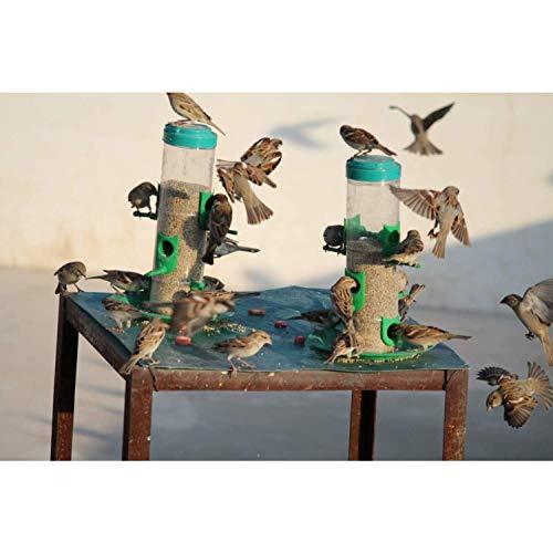 Amijivdaya Large Bird and Water Feeder Combo (Green, Transparent)