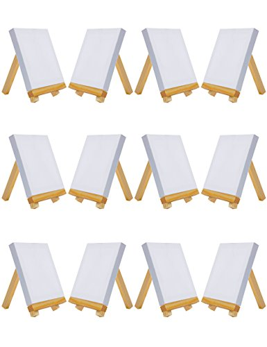 MEEDEN Mini Canvas & Easel Set of 12 PCS, 4