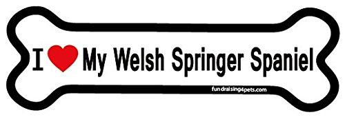 I Love My Welsh Springer Spaniel bone magnet