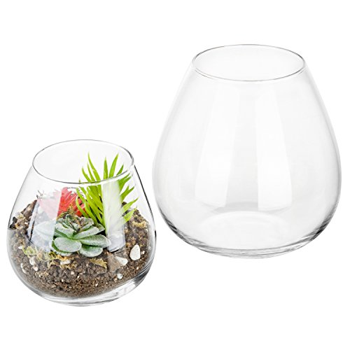 (Set of 2 Decorative Modern Round Clear Glass Display Vases/Bowl Candleholders/Air Plant Terrarium Cups)