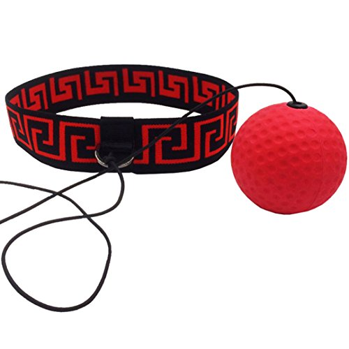 Lessons Using Learning Bags - Boxing Reflex Fight Ball by Abra Athletics: Great for Improving Reactions, Punching, Hand Speed and Agility, Headband Fits All, Perfect for Boxing, Training and Fitness, Premium Gym Boxing Equipment