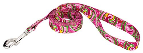 Country Brook Design 5/8 Inch Pink Paisley Leash - 6 Feet